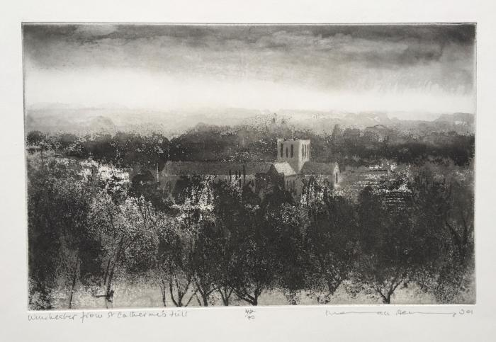 Winchester from St Catherines Hill